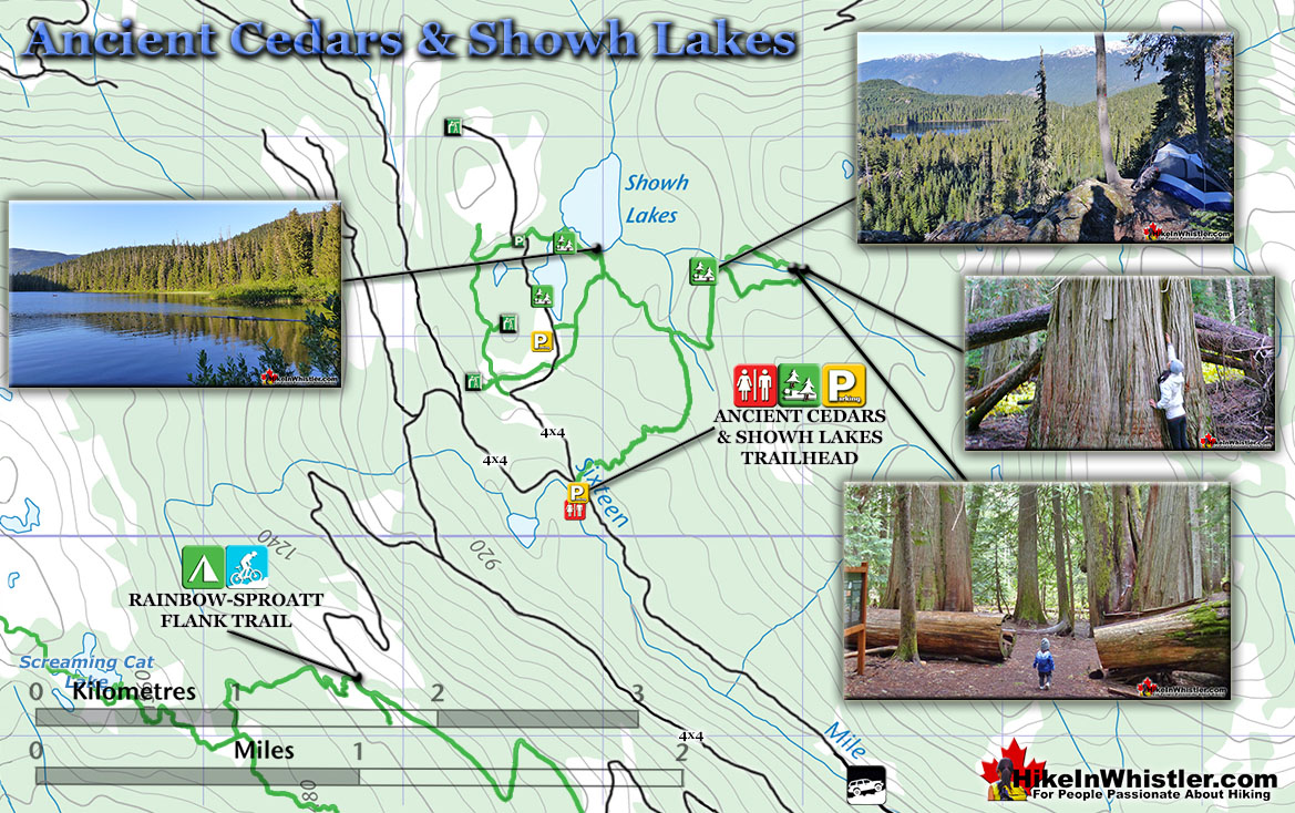 Ancient Cedars and Showh Lakes