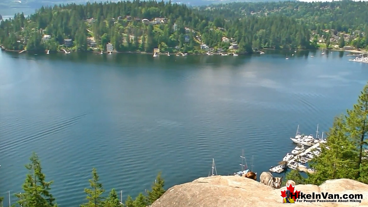 Deep Cove Lookout