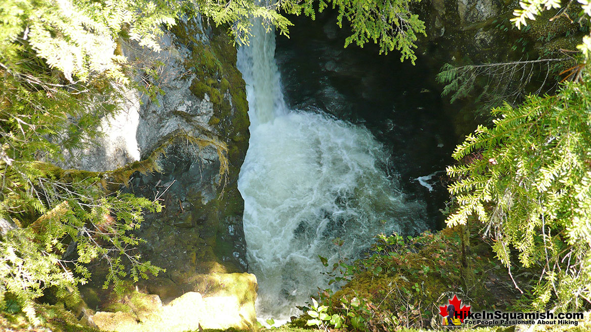 High Falls Trail Hike in Squamish