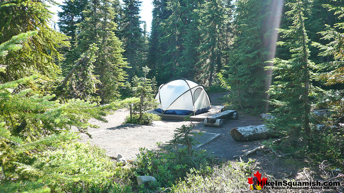 Taylor Meadows Campground